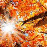 Топлоизолация на дома през м.Септември
